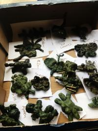 Moulded wax sculptures from Kindie students